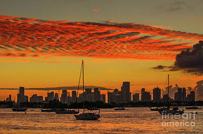 Photograph - Miami's Skyline And Biscayne Bay by Rene Triay Photography