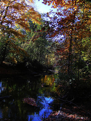 Photograph - Michigan Fall Colors 3  by Scott Hovind