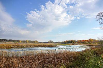 Photograph - Michigan Marshland by Kathi Mirto