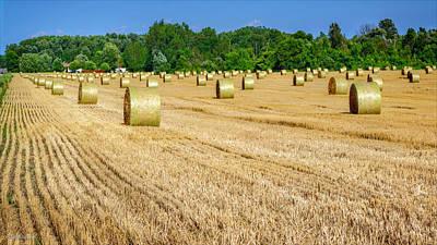 Background Photograph - Michigan Round Hay Bales by LeeAnn McLaneGoetz McLaneGoetzStudioLLCcom