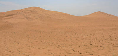 Photograph - Michigan Sand Dune Landscape by Dan Sproul