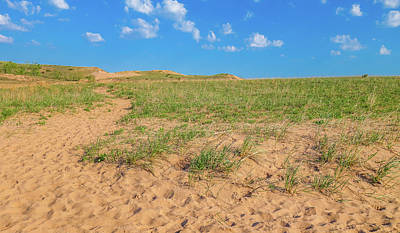 Photograph - Michigan Sand Dune Landscape In Summer by Dan Sproul