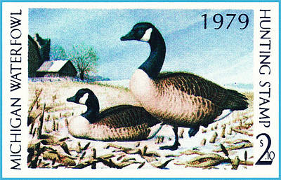 Painting - Michigan Waterfowl by Lanjee Chee