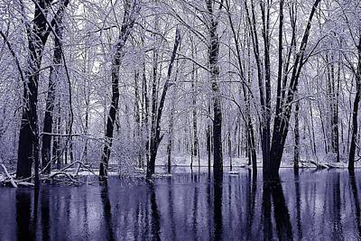 Photograph - Michigan Winter 11 by Scott Hovind