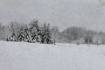 Photograph - Michigan Winter 16 by Scott Hovind