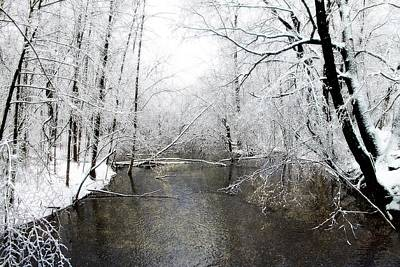 Photograph - Michigan Winter 17 by Scott Hovind