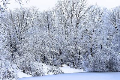 Photograph - Michigan Winter 5 by Scott Hovind