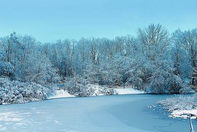 Michigan Winter 6 Art Print by Scott Hovind