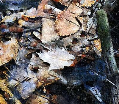 Painting - Microcosm In An Autumn Pond by RC DeWinter