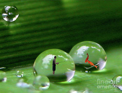 Photograph - Microcosms by Mariarosa Rockefeller
