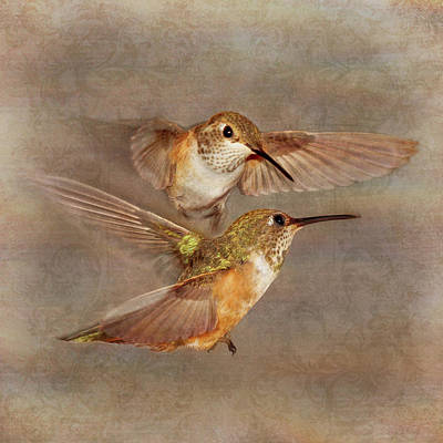 Photograph - Mid-flight I by Leda Robertson