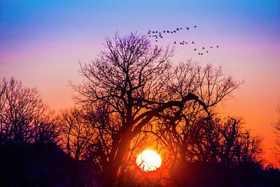 Photograph - Mid March Nebraska Sunset 011 by NebraskaSC
