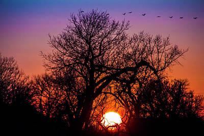 Photograph - Mid March Nebraska Sunset 013 by NebraskaSC