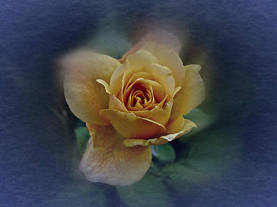 Art Print featuring the photograph Mid September Rose by Richard Cummings