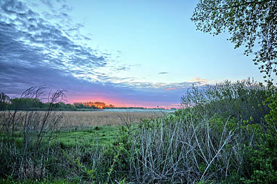 Photograph - Mid Spring by Bonfire Photography