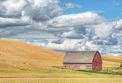 Photograph - Mid Summer Clouds II by Doug Davidson