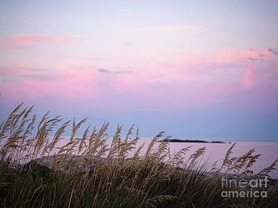 Photograph - Mid-summer Sunset, Coast Of Maine #30096 by John Bald
