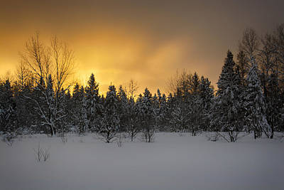 Photograph - Mid-winter Glow by Dan Hefle