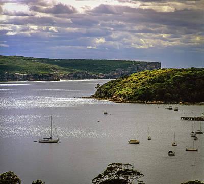 Photograph - Middle Harbour, Sydney by David Halperin