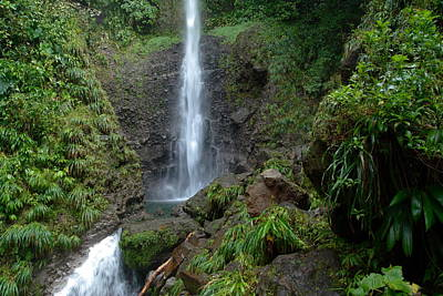 Middleham Waterfall In Dominica Print by Tropical Ties Dominica
