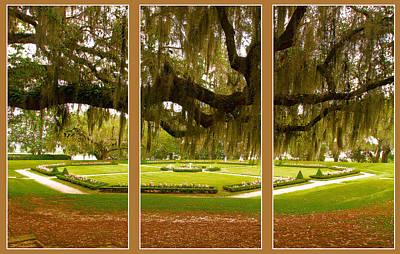 Art Print featuring the photograph Middleton Gardens Triptych by Bill Barber