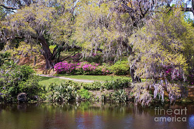 Photograph - Middleton Place Garden Path by Sharon McConnell