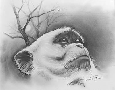 Drawing - Midnight Bandit  by Joseph Palotas