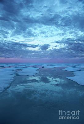Photograph - Midnight Blues.. by Nina Stavlund