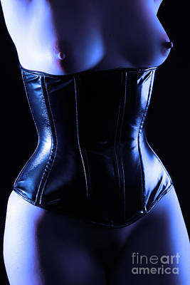 Photograph - Midnight Bustier by Robert WK Clark