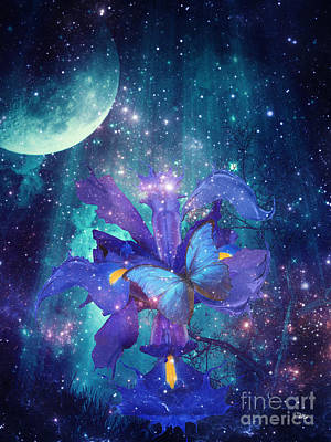 Midnight Butterfly Art Print by Mo T