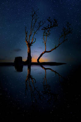 Art Print featuring the photograph Midnight Dance Of The Trees by Mark Andrew Thomas