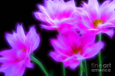 Floral Digital Art Digital Art Digital Art - Midnight Fairytale by Krissy Katsimbras