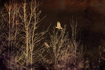 Mixed Media - Midnight Flight Silhouette by Lesa Fine