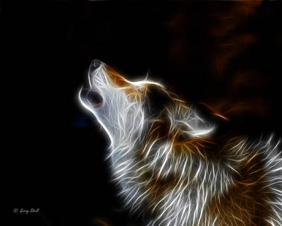 Photograph - Midnight Howl by Gerry Sibell
