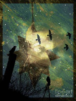 Photograph - Midnight Magic by Robert Ball