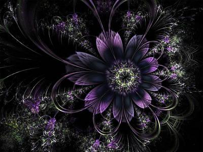 Digital Art - Midnight Mistletoe by Barbara A Lane