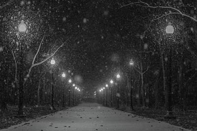 Photograph - Midnight Snow Storm by Pravin Sitaraman