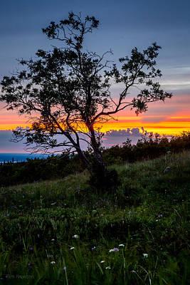 Photograph - Midnight Sunset by Tim Newton