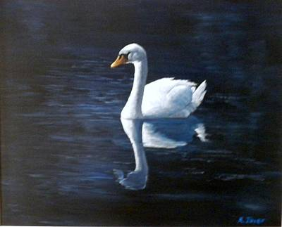 Midnight Swan Art Print by Marti Idlet