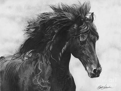 Drawing - Midnight Thunder by Barb Schacher