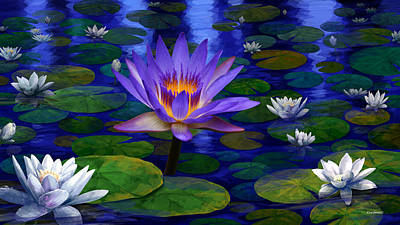 Photograph - Midnight Water Lily Pond by Gary Crockett