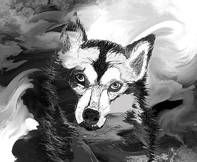 Beautifully Designed Abstract Wolf Drawings Fine Art America