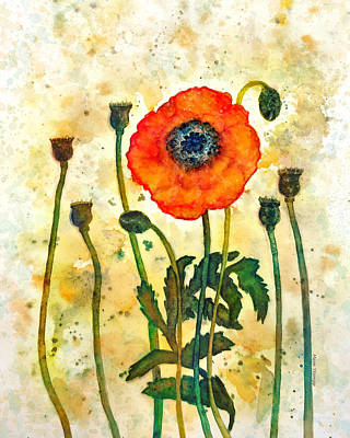 Sewing Room Painting - Midsummer Poppy by Moon Stumpp