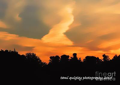 Photograph - Midsummerset by Tami Quigley