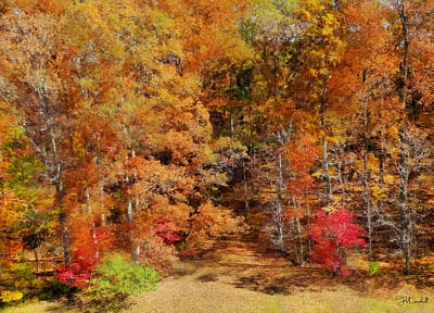Midwest Fall Colors  Art Print by Theresa Campbell