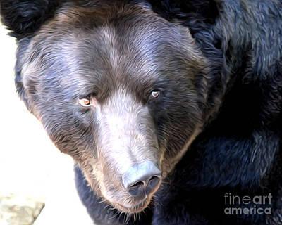 Mighty Black Bear Art Print by Anne Raczkowski