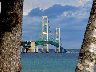 Photograph - Mighty Mac Framed By Trees by Keith Stokes