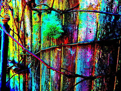 Photograph - Mike's Art Fence 205 by George Ramos