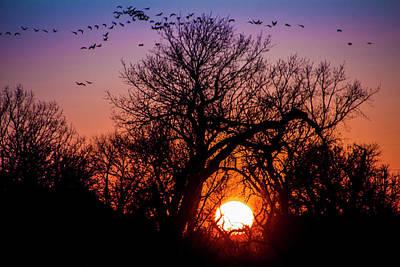 Photograph - Mid March Nebraska Sunset 012 by NebraskaSC