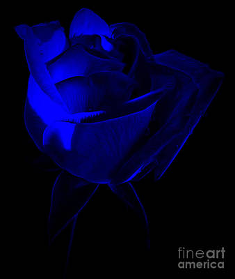 Blue Flowers Photograph - Miles Away by Krissy Katsimbras